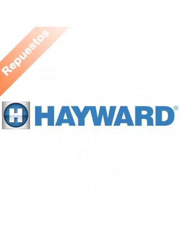 Repuestos Hayward